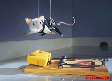Mission impossible fromage